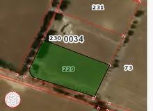 ((((حرق سعر))))قطعة ارض للبيع 4 دونم في ام العمد طريق المطار من المالك مباشرة .