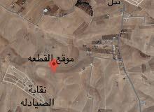 ارض 4 دنم في جنوب عمان للبيع