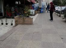 محل 80 م بحي السفارات مدينة نصر