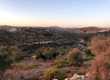 أرض بمنطقة جرش بالقرب من محمية الغزلان بسعر مغري