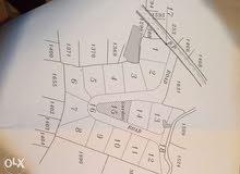 عقار قيد الافراز في اقليم الخروب / بلدة بعاصير رقم (8)