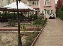 More rooms More than 4 bathrooms Villa for sale in HawallyShuhada