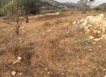ارض للبيع في اربد النعيمه