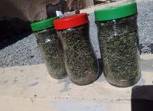 للبيع سعتر عماني