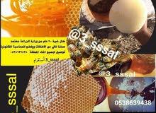 عسل حر طبيعي 100% مرخص