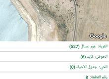 ارض زراعية في غور اعسال 4 دونم و 500 متر و قريبة من البحر الميت