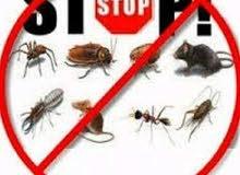 مكافحه الحشرات والقوارض والصراصيرمع الضمان