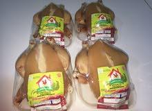 دجاج طازج للمحلات و والمطاعم ( 98230074)