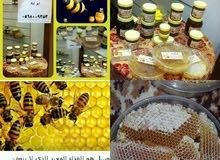 نحل بلدي وعسل طبيعي%للبيع