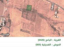 الباعج حوض الفحيلية بجانب بلدية الامير حسين