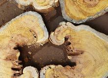 خشب للأيبوكسي