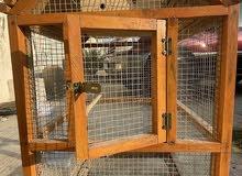cage قفص