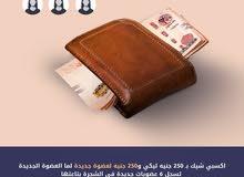 تسويق منتجات شركة بريمور المصريه