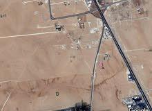 ارض تنظيم سكني اللبيع في الموارس - الجيزه