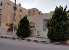 4 rooms Villa palace for rent in Amman