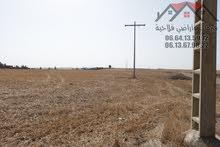 ارض فلاحية 6 هكتارات محفظة على الطريق الوطنية