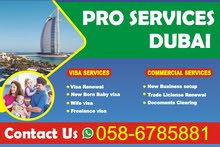 NO ADVANCE. FAMILY SPONSOR VISA QUICK SERVICES