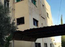 Best price 140 sqm apartment for rent in SaltEin Al-Basha