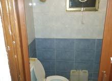 apartment for rent in IrbidAl Naseem Circle