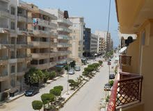 شقه 100 متر في شارع الدفاع الجوي في شاطئ النخيل