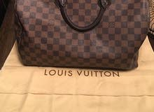 Louis Vuitton speedy bag