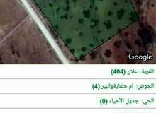 ارض زراعيه للبيع 4 دونمات و750 متر