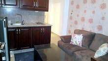 Apartment for rent - in Abdoun - daily or weekly or monthly - very luxurious