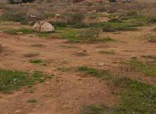 ارض للبيع في بوصنيب وقنفوده