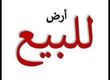 ارض للبيع نهايه حي الجهاد خلف الملحانيه الدخول لها من مدخل حي الحسين مقابل بانزين خانه حي العامل