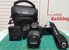 canon d700