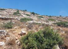 أرض طابو للبيع في قراوة بني زيد - رام الله والبيرة