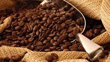 بن قهوة برازيلية رينو ميناس 17-18