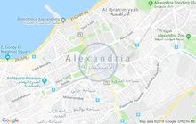 شقق للإيجار اليومي بالإسكندرية