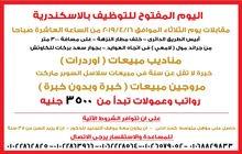 اليوم المفتوح للتوظيف فى الاسكندرية