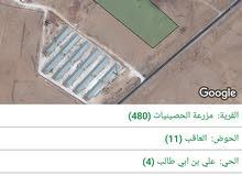 ارض ارض للبيع ع طريق السعيديه الخالديه  مرسوم الشارع صايدين واجه 72 متر 33 دونم