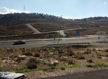 ارض  800 متر مميزه جدا عل شارعبن  اسكان دكاتره الجامعه