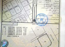 أرض للبيع في ولاية صور الغليلة1