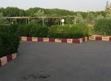 مزرعة للبيع في ( حوارة ) ارضي جنوب عمان