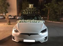 Automatic  Tesla 2019 for rent