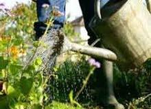 entretien de jardin et d'espace vert