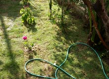 ابو حيدر لخدمات الحدائق كل ما تحتاجه الارض