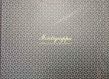 luxury montegrppa watch & pen