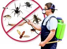 شركه تعقيم وتنظيف من الحشرات والفيروسات