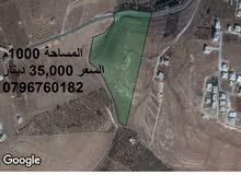 ارض 1000م جنوب قصر العوادين