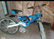 gomaa bike عجلة جومعا بسورعات