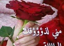 السلام عليكم ورحمة الله وبركاته انا من مصر معي رخصه عامه متفرغ وجاهز فورا للعمل 55844294 ابواحمد