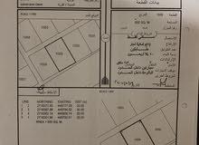 ارضين شبك في الأسرار خلف مزرعه الكويتي مطلوب فيهن15الف