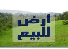 ارض للبيع في زناته قرب جامع بكير