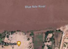 قطعه ارض ف شارع النيل امام جامعه الرباط الوطني