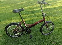 Roxy bicycle